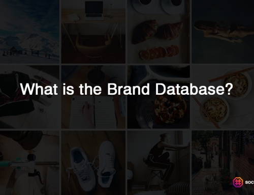 [Guide] What is the brand database, and how do I use it?